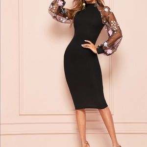 Lace Raglan Sleeve Split Back Fitted Dress